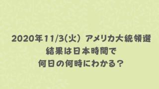 2020年11月3日(火) アメリカ大統領選結果は日本時間で何日の何時にわかる?