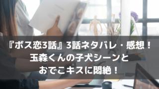 ボス恋3話ネタバレ・感想!玉森くんの子犬シーンとおでこキスに悶絶!